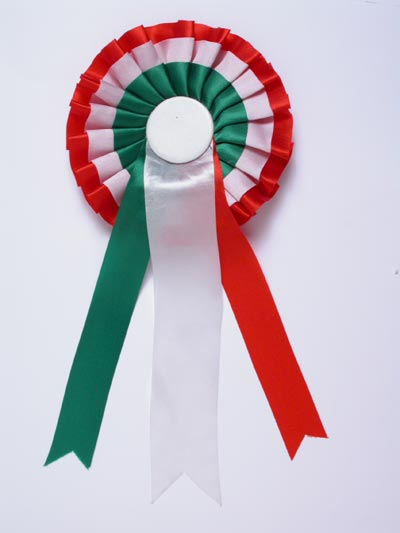 Festa unit d 39 italia lavoretti poesie canzoni disegni - Costume da bagno tricolore ...