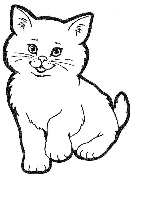 Disegni da colorare schede operative - Gatto disegno modello di gatto ...